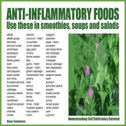 Natural Anti-Inflammatory Foods Anti-Inflammatory Diets