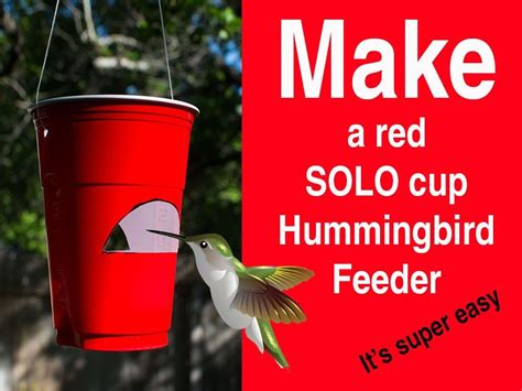 how to make a red solo cup hummingbird feeder red solo
