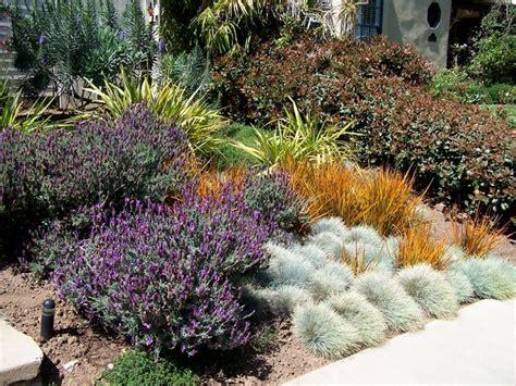 garden california style traditional landscape