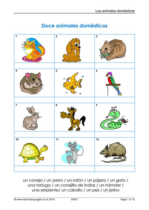 ks spanish family  pets teachit languages