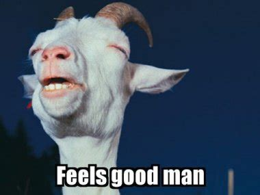 Feel Good Meme - image 125331 feels good man know your meme