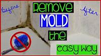 clean shower grout HOW TO CLEAN GROUT THE EASY WAY    LIFE AS A TWIN MOM - YouTube