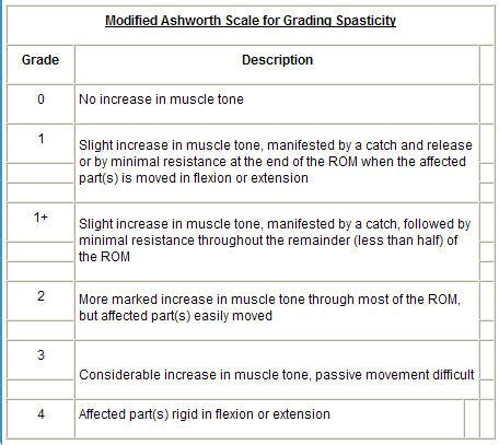 Modified Scale by Motor Strength Grading Impremedia Net