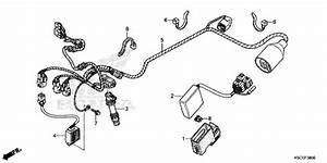 Honda Crf250x 2013 Wire Harness Supplied Next Day  Uk Only