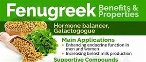 Fenugreek For Breast Growth Review