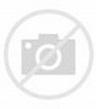 Ann Arbor Michigan Wall Map Print Vintage 1895 Map of Ann ...