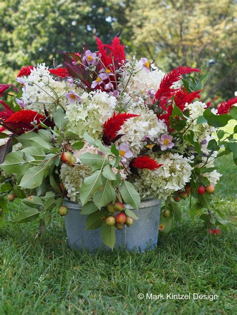 autumn garden flowers early fall garden flowers flowers pinterest