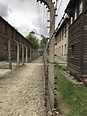 Auschwitz, Poland : travel
