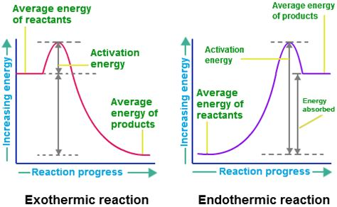 Endothermic and Exothermic Reactions Graphs