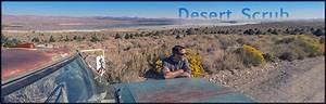 Desert Scrub Biome - Untamed Science