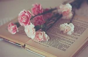 photography vintage book flowers pink roses livingchea10 •