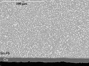 Sem Micrograph Showing The Initial Microstructure Of The