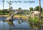 51 Cent Adventures: La Brea Tar Pits - Los Angeles, California