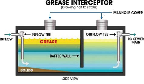 under sink grease trap sizing grease traps auckland and hamilton drain unblockers ltd