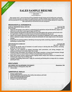 top sales resumes idealvistalistco With best sales resume examples