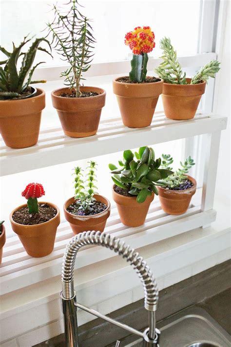 diy window ledge plant shelf