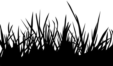 nature silhouettes  outlines  vector images