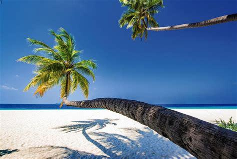 chambre ambiance bord de mer poster grand format palmier en trompe l 39 oeil paysage océan