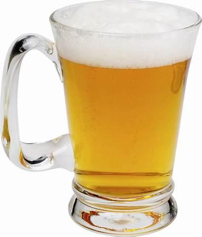 Beer Cerveza Clipart Glass Transparent Lager Mugs