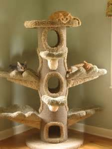 cat furniture cat trees for pered cats cat pause
