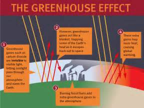 Greenhouse Effect Science Project