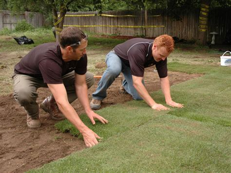 when to lay sod how to remove old sod and lay new sod how tos diy