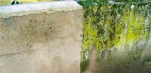quelques liens utiles With comment nettoyer un mur crepi exterieur