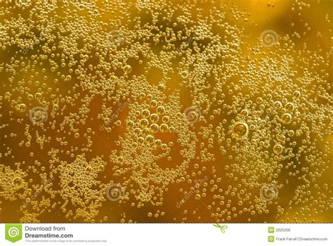 beer bubbles royalty  stock image image