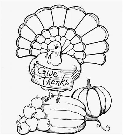Turkey Thanksgiving Coloring Sheets Printable Turkeys Sheet