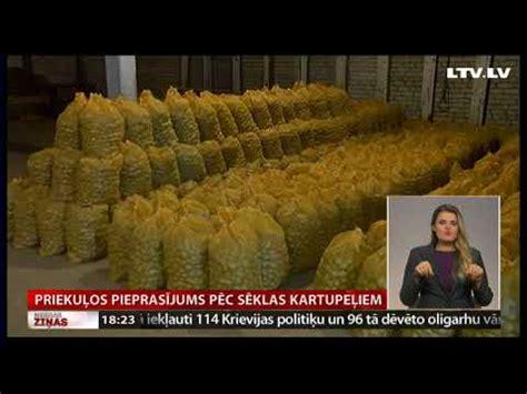 Priekuļos pieprasījums pēc sēklas kartupeļiem - YouTube