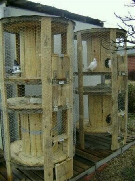 awesome chicken coops pigeon coop cool upcycle ideas pinterest pigeon upcycling and bill o brien