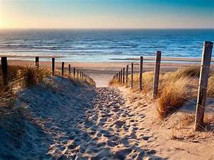 Bilder Meer Strand : home affaire leinwandbild sandstrand meer strand 80 60 cm online kaufen otto ~ Eleganceandgraceweddings.com Haus und Dekorationen