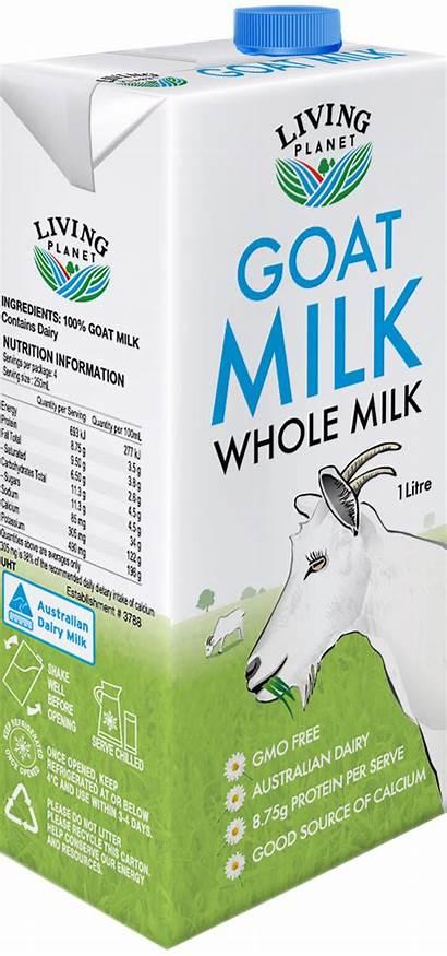 Milk Goats Planet Goat Living Uht Whole