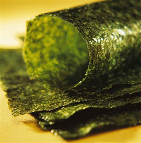 cuisiner des algues et si cuisiner les algues était plus ragoûtant qu 39 il n 39 y