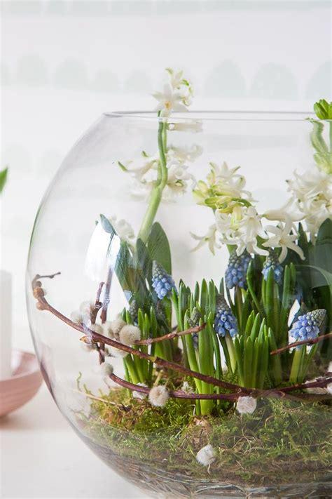 fruehlingserwachen mit blumenzwiebeln dekorieren