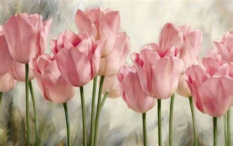 Soft pink tulips HD desktop wallpaper : Widescreen : High Definition