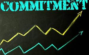 How's Your Level of Commitment? – Focus Online