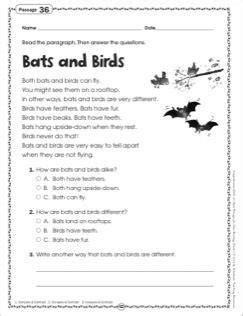 bats and birds grade 1 reading passage 2nd grade grade reading comprehension