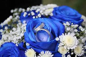 Theme de mariage bleu marine argent et blanc for Quelle couleur avec le bleu 6 la signification des roses quelle couleur de roses offrir