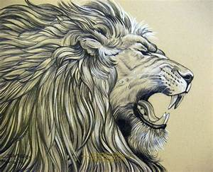 Realistic Lion Drawing - Drawing Art Gallery
