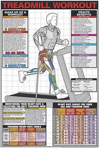 145 Best Images About Fitness Posters That Get You In