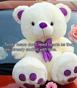 Cute Teddy Bear... Cute Bear Quotes
