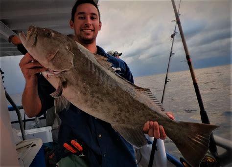 grouper florida fisherman snapper hour trip ll roam gags carolina did north know