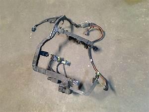 Wiring Harness Engine D4f Cb  Sb