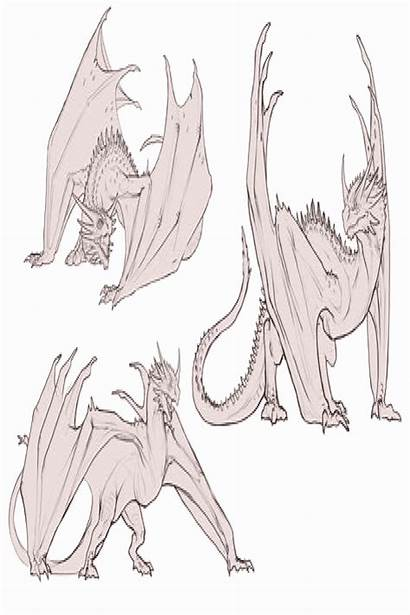 Dragons Drawing Easy Dragon Poses Looking Down