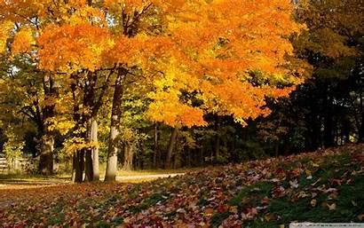 Autumn Scenes Wide Wallpapertag