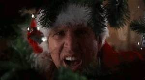 Christmas Vacation GIF Find & on GIPHY