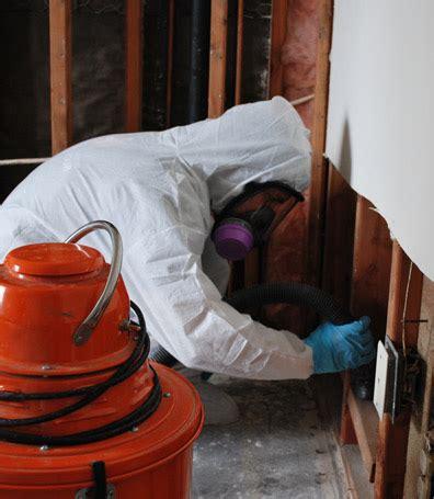 mold removal  remediation af environmental tx