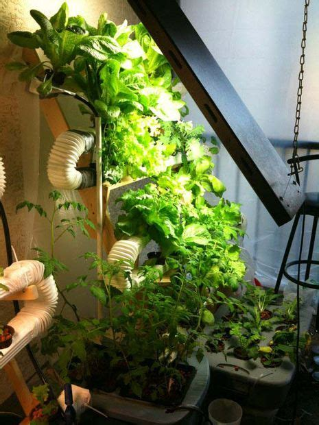 innovative diy hydroponics systems  grow soil