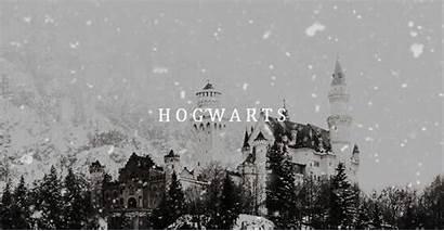 Potter Harry Aesthetic Hp Weasley Twins Uploaded